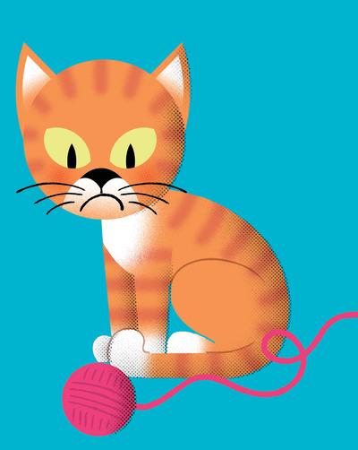 cat-jpg-1
