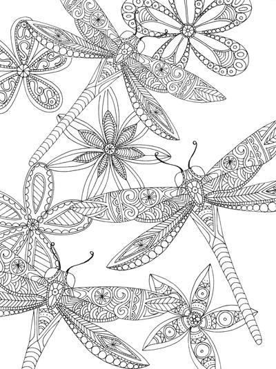 lizzie-preston-dragon-flies-jpg