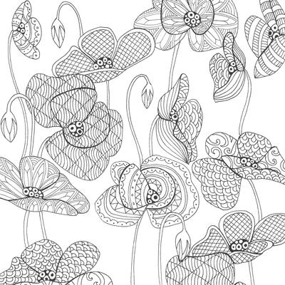 lizzie-preston-poppies-jpg