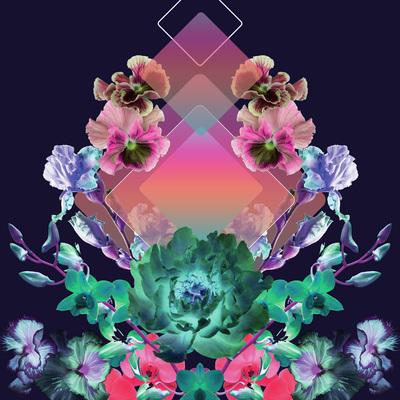 lsk-future-living-floral-mirror-jpg