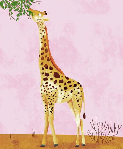 giraffee-jpg-1