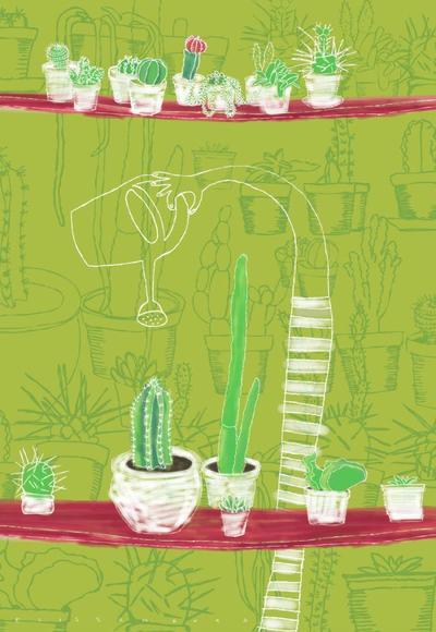 cactus-9