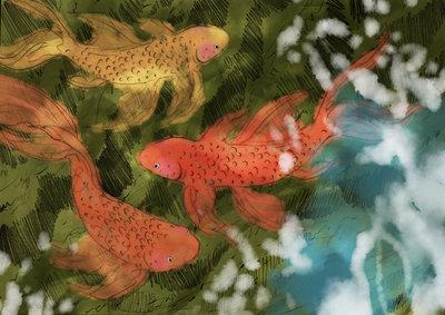 goldfish-underwater-light-reflection-colourful-pond-erinbrown-jpg