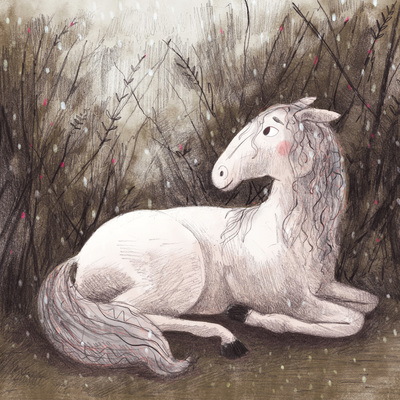 horse-white-lineart-winter-cold-erinbrown-jpg